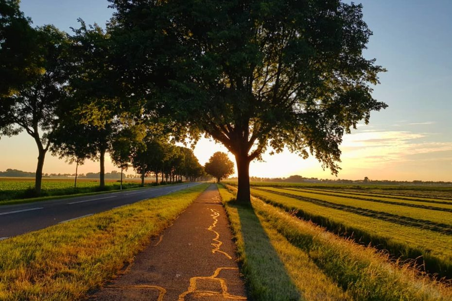 Sunset in the Dutch countryside. Photo by Tom van der Leij.