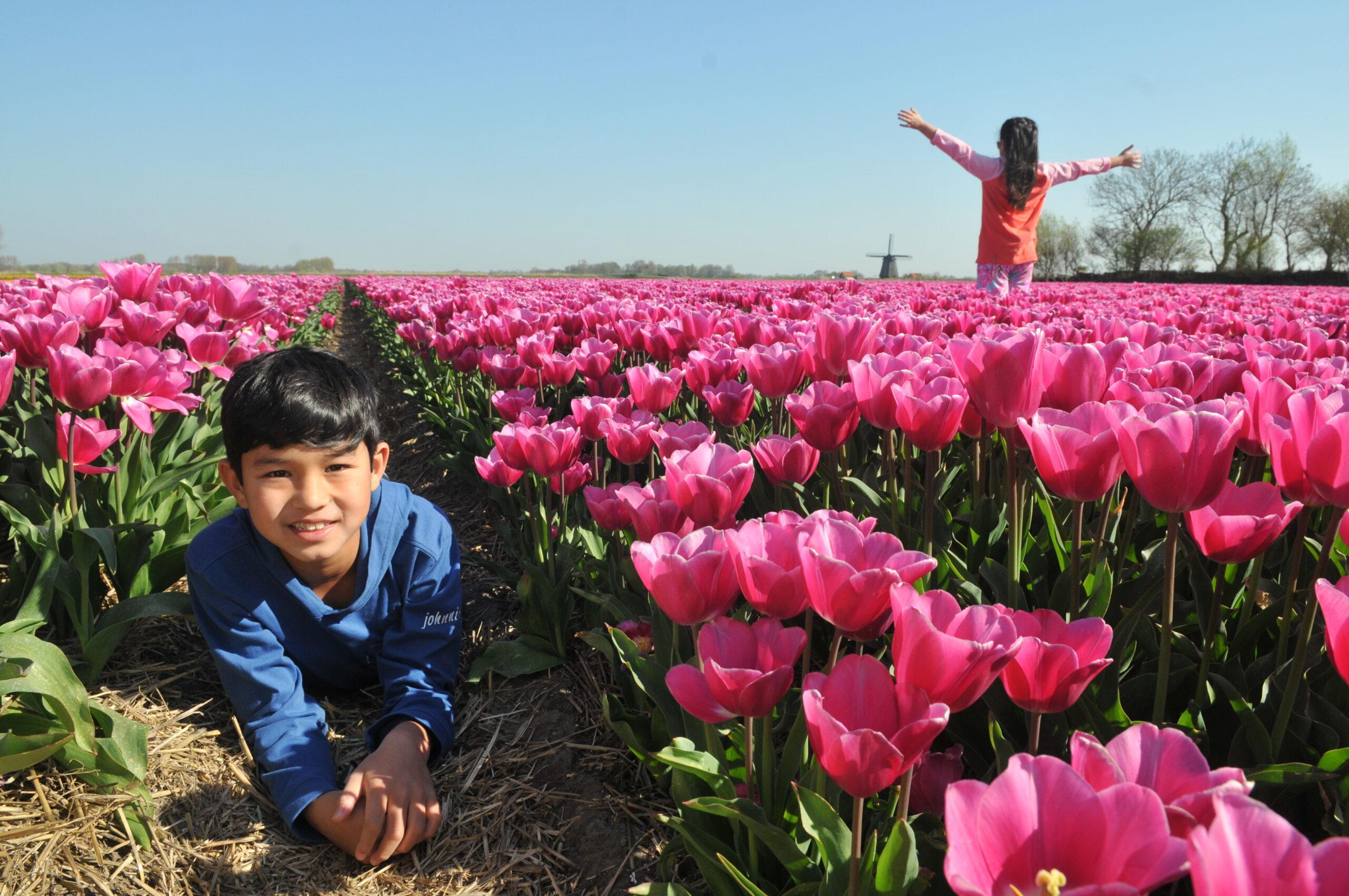 Kids in Dutch tulip fields by Amsterdam photographer Tom van der Leij