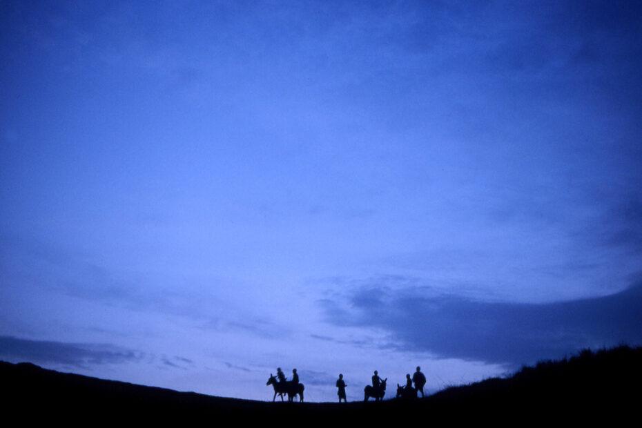 Fotografiereis Zuid-Afrika door Tom van der Leij rondreis Transkei en Wildcoast ezels